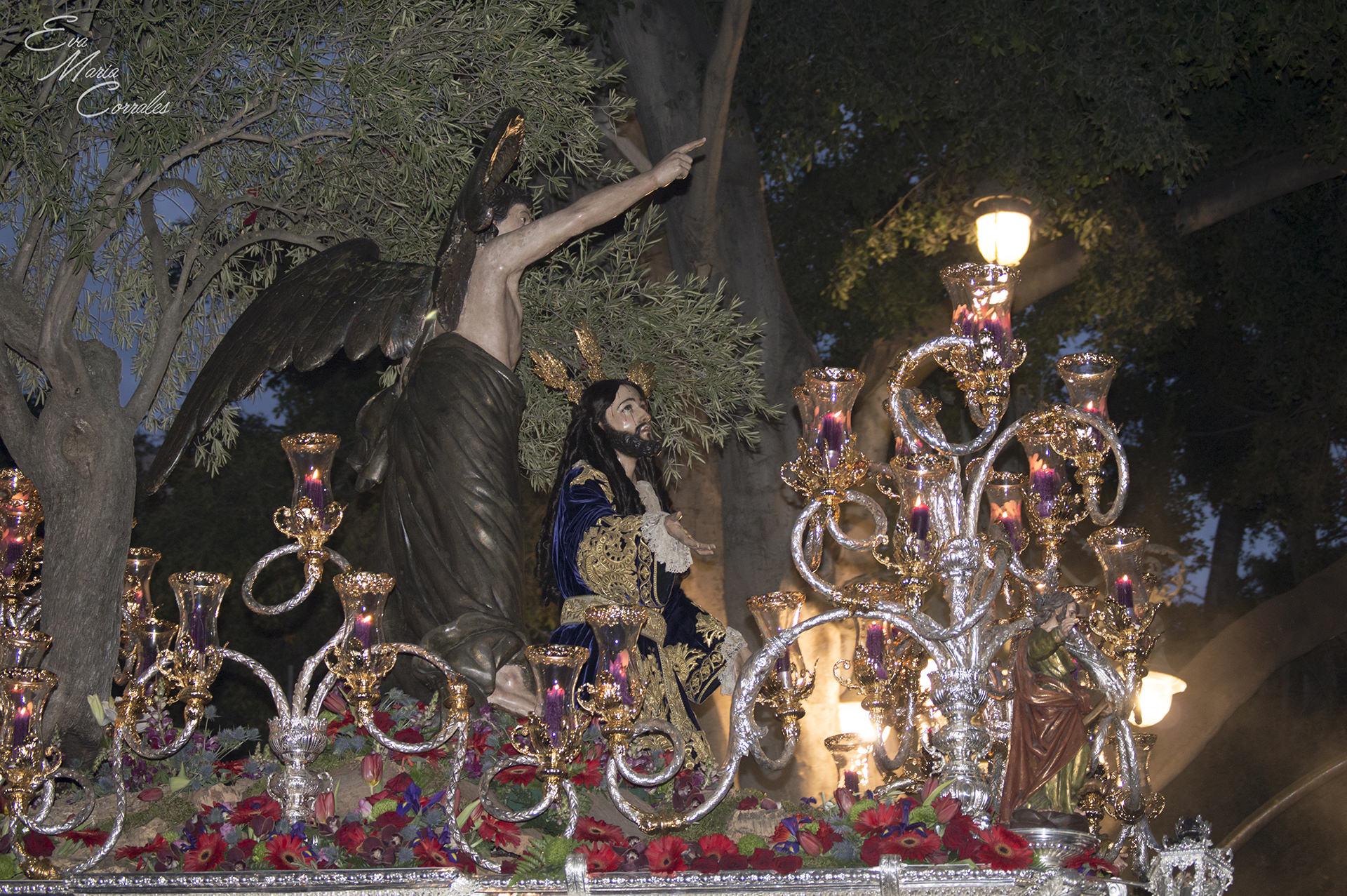 Huerto, Málaga 5