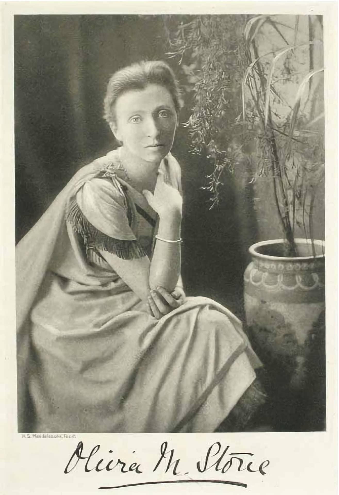 Olivia Stone, El Tesoro de la Concepción